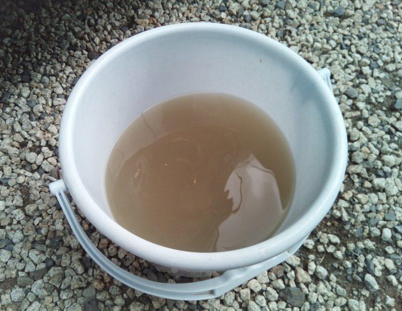 シートベルト洗浄後の廃液を捨てる